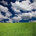background of the nature,cloud above the lawn. Stock Photo - Royalty-Free, Artist: csguy                         , Code: 400-05283669