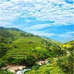 Rice field terraces at nothern Vietnam Stock Photo - Royalty-Free, Artist: GoodOlga                      , Code: 400-05293036