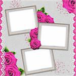 Vintage elegant silver frames with rose and lace