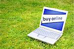 buy online or ecommerce concept with laptop in green grass Stock Photo - Royalty-Free, Artist: gunnar3000                    , Code: 400-05301919