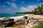Tropical paradise on Sri Lanka with palms hanging over the white and red beach, turquoise sea and boulders in the front