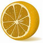 Juicy lemon. Illustration in vector format EPS Stock Photo - Royalty-Free, Artist: orensila                      , Code: 400-05312990