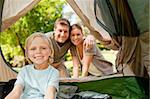 Family camping in the park Stock Photo - Royalty-Free, Artist: 4774344sean                   , Code: 400-05319888