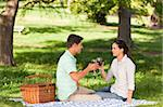 Young couple  picnicking in the park Stock Photo - Royalty-Free, Artist: 4774344sean                   , Code: 400-05320801