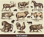 Set of animals Stock Photo - Royalty-Free, Artist: marinakim                     , Code: 400-05325849