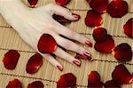 Beautiful hand with perfect nail red manicure and rose petals. Stock Photo - Royalty-Free, Artist: smartfoto                     , Code: 400-05326084