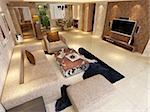 Interior fashionable living-room rendering Stock Photo - Royalty-Free, Artist: baojia1998                    , Code: 400-05332047
