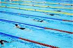 swimmers swimming in a pool Stock Photo - Royalty-Free, Artist: tarczas                       , Code: 400-05338279