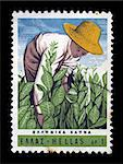 GREECE - CIRCA 1966. Vintage postage stamp with farmer harvesting tobacco plants illustration, circa 1966. Stock Photo - Royalty-Free, Artist: sirylok                       , Code: 400-05352558