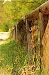 view of weathered wood fence in forest Stock Photo - Royalty-Free, Artist: rpstudio                      , Code: 400-05353677