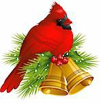 Cardinal Bird with Christmas bells over white. EPS 8, AI, JPEG Stock Photo - Royalty-Free, Artist: jara3000                      , Code: 400-05359840