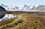 Arctic summer landscape - tundra, sea and mountains Stock Photo - Royalty-Free, Artist: erectus                       , Code: 400-05361251