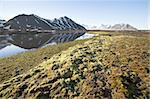 Arctic summer landscape - tundra, sea and mountains Stock Photo - Royalty-Free, Artist: erectus                       , Code: 400-05361254