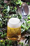 beer in glass surrounded by hops Stock Photo - Royalty-Free, Artist: bernjuer                      , Code: 400-05361767
