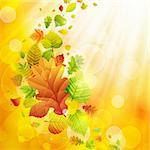 Autumn background with colorful leaves and place for text. Vector illustration. Stock Photo - Royalty-Free, Artist: avian                         , Code: 400-05363895