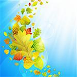 Autumn background with colorful leaves on sky and place for text. Vector illustration. Stock Photo - Royalty-Free, Artist: avian                         , Code: 400-05363896
