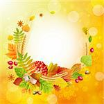 Autumn background with colorful leaves and place for text. Vector illustration. Stock Photo - Royalty-Free, Artist: avian                         , Code: 400-05363905