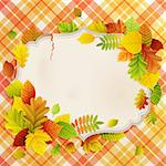 Autumn vintage greeting card with colorful leaves and place for text. Vector illustration. Stock Photo - Royalty-Free, Artist: avian                         , Code: 400-05363910