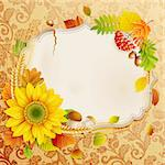 Autumn vintage greeting card with colorful leaves and place for text. Vector illustration. Stock Photo - Royalty-Free, Artist: avian                         , Code: 400-05363911