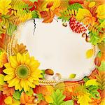 Autumn vintage greeting card on colorful leaves background with place for text. Vector illustration. Stock Photo - Royalty-Free, Artist: avian                         , Code: 400-05363914