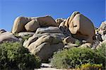 Boulders in Joshua Tree National Park, California Stock Photo - Royalty-Free, Artist: Wilsilver77                   , Code: 400-05368131