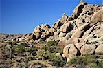 Boulders in Joshua Tree National Park, California Stock Photo - Royalty-Free, Artist: Wilsilver77                   , Code: 400-05368132