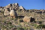 Boulders in Joshua Tree National Park, California Stock Photo - Royalty-Free, Artist: Wilsilver77                   , Code: 400-05368133