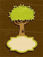 Vintage illustration of a tree with green foliage Stock Photo - Royalty-Freenull, Code: 400-05370519
