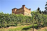 Old castle of Grinzane Cavour as seen through vineyards in Piedmont, northern Italy. Stock Photo - Royalty-Free, Artist: rglinsky                      , Code: 400-05370571