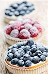 Closeup of fancy gourmet fresh berry dessert tarts Stock Photo - Royalty-Free, Artist: Elenathewise                  , Code: 400-05380245