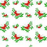 seamless pattern of several bunches of rowan on a white background Stock Photo - Royalty-Free, Artist: Oksvik                        , Code: 400-05381414