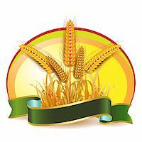 Wheat ears with ribbon Stock Photo - Royalty-Freenull, Code: 400-05386608