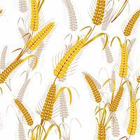 Seamless pattern with wheat ears Stock Photo - Royalty-Freenull, Code: 400-05386612