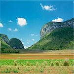 Vinales Valley, Pinar del Rio Province, Cuba Stock Photo - Royalty-Free, Artist: phbcz                         , Code: 400-05387238
