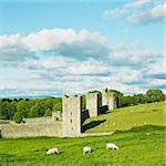 Kells Priory, County Kilkenny, Ireland Stock Photo - Royalty-Free, Artist: phbcz                         , Code: 400-05387316