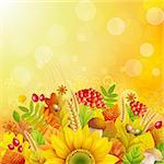 Autumn background with colorful leaves. Vector illustration. Stock Photo - Royalty-Free, Artist: avian                         , Code: 400-05387737