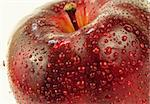 red delicious apple with droplets on it