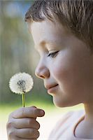 smelly - A boy holding a dandelion up to his nose Stock Photo - Premium Royalty-Freenull, Code: 653-05393244