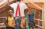 Carpenters working at a construction site Stock Photo - Premium Royalty-Freenull, Code: 6105-05396178