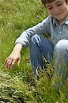 Boy sitting in grassy field Stock Photo - Premium Royalty-Free, Artist: Aurora Photos            , Code: 633-05401489