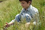 Boy playing with grass in field Stock Photo - Premium Royalty-Free, Artist: Aurora Photos            , Code: 633-05401894