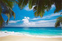 seychelles - Tropical beach, Seychelles, Indian Ocean, Africa Stock Photo - Premium Royalty-Freenull, Code: 6106-05405565