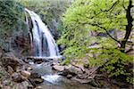 Crimea waterfall Stock Photo - Premium Royalty-Freenull, Code: 6106-05408958