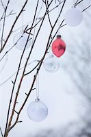 snow christmas tree white - baubles hanging on a Winter tree in the snow Stock Photo - Premium Royalty-Freenull, Code: 6106-05410718