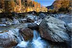 golden autumn in tirol Stock Photo - Premium Royalty-Freenull, Code: 6106-05412959