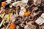 Compost Stock Photo - Premium Royalty-Free, Artist: Michael Breuer, Code: 6106-05420185