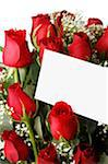Dozen Red Roses with Blank Note on White Stock Photo - Premium Royalty-Free, Artist: Klick, Code: 6106-05429167