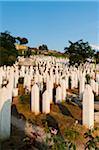 Kovaci War Cemetery, Sarajevo, Federation of Bosnia and Herzegovina, Bosnia and Herzegovina Stock Photo - Premium Rights-Managed, Artist: Emanuele Ciccomartino, Code: 700-05451999