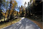Road, Albula Pass, Canton of Graubunden, Switzerland Stock Photo - Premium Royalty-Free, Artist: Raimund Linke, Code: 600-05452171