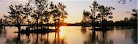 This is the wildlife refuge at Lake Fausse Pointe State park at sunset. The cypress trees are growing all around the lake and on islands in the water. Stock Photo - Premium Royalty-Freenull, Code: 6106-05472543